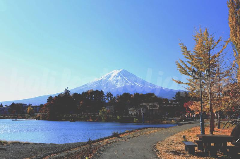 1385036366 IMG0001JPG o - ทะเลสาบคาวากูจิโกะ