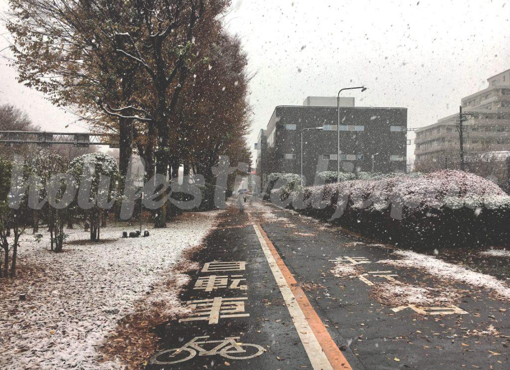 Cx S8FbUoAAxduw 1024x742 - เหตุผลที่ควรจะดูพยากรณ์สภาพอากาศเมื่อเยือนประเทศญี่ปุ่น