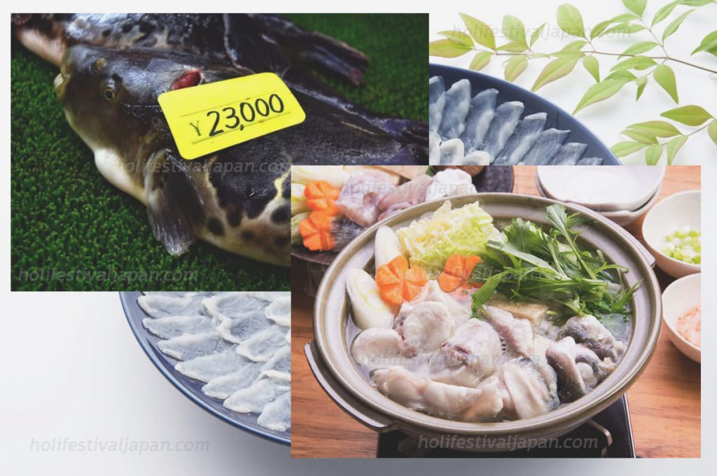 เมนูยามากูจิหรือปลาปักเป้า2 1024x680 - เมนูยามากูจิ ที่ชาวญี่ปุ่นนิยมนำมาบริโภคตั้งแต่สมัยโบราณมาจนถึงปัจจุบัน