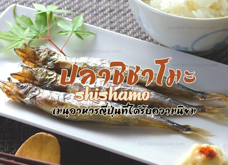 ปลาชิชาโมะ (Shishamo)